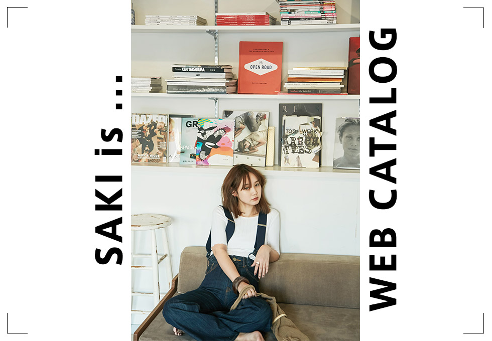 SAKI is... WEB CATALOG1